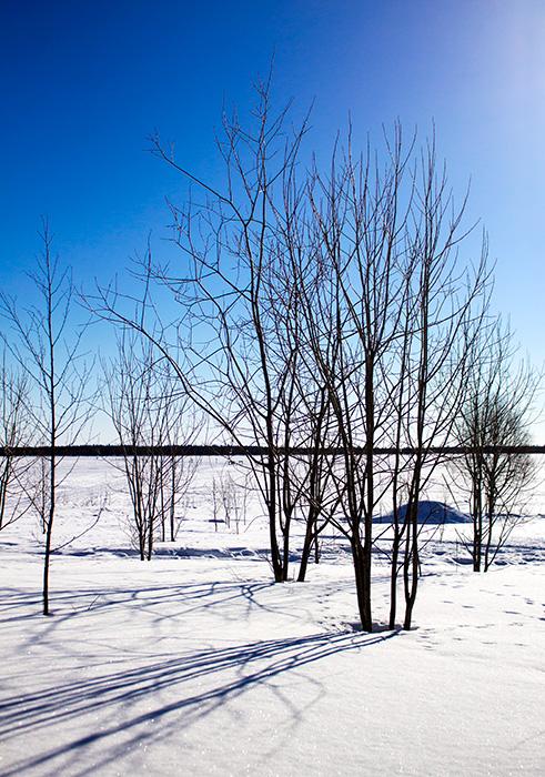 Laponie - 16