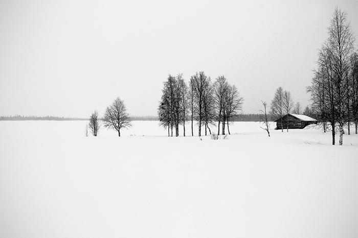 Laponie - 20