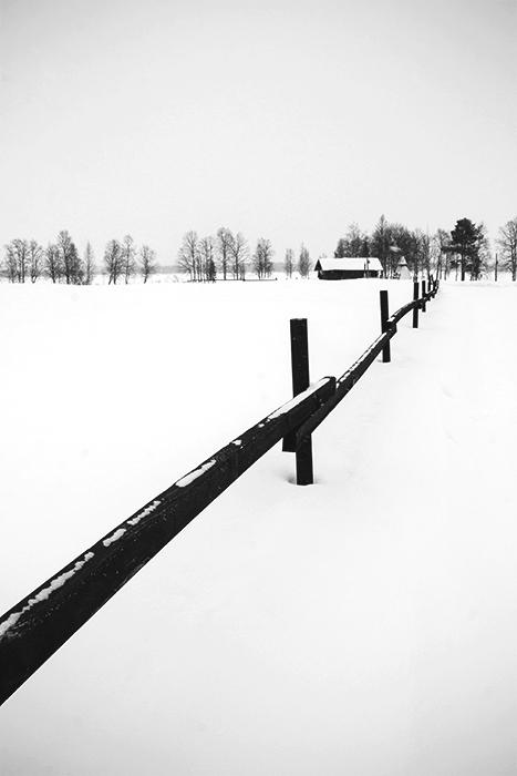 Laponie - 09
